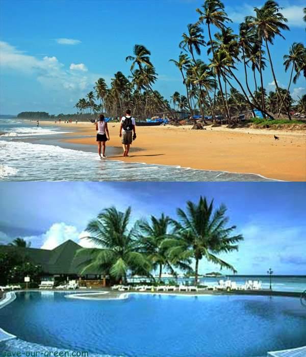 Goa Sea Beach India Save Our Green