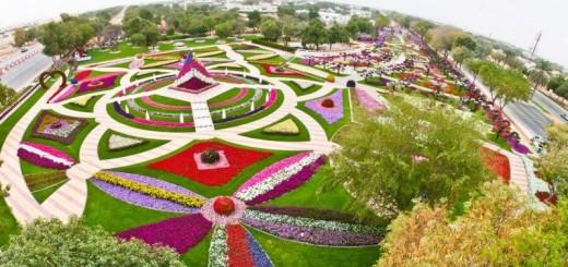 Largest Hanging Garden