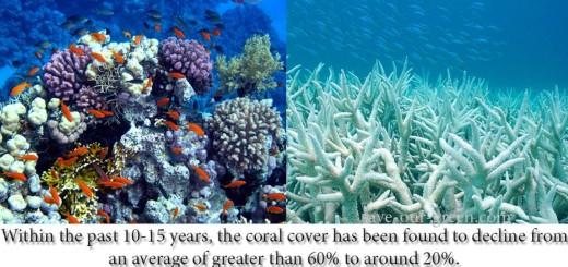 Marine Disaster: Alarming degradation of Coral Reefs