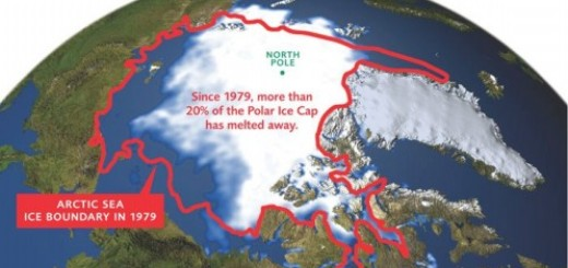Melting Arctic Sea Ice Alarms the world