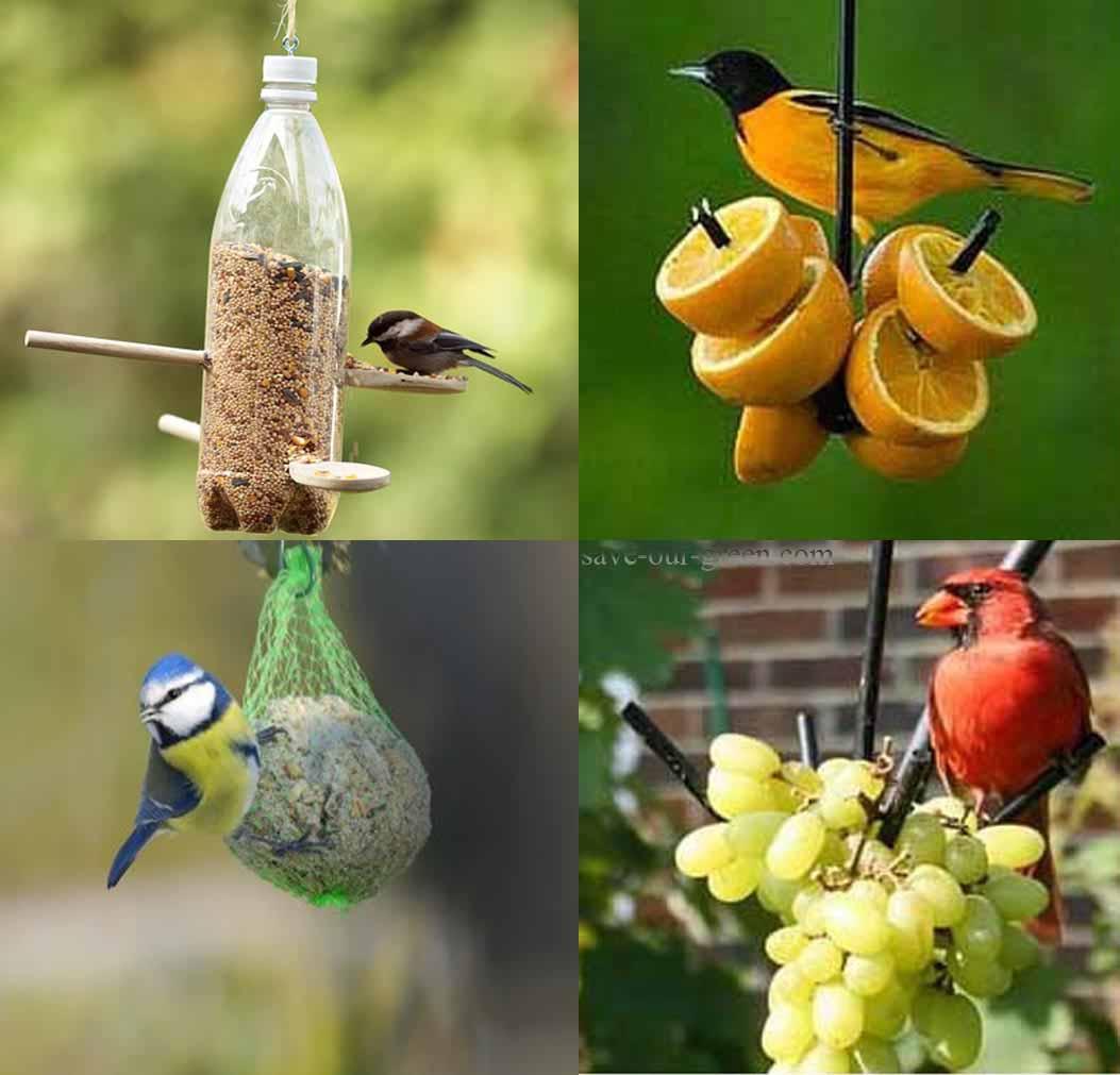 Man Vs Nature Photography Ideas