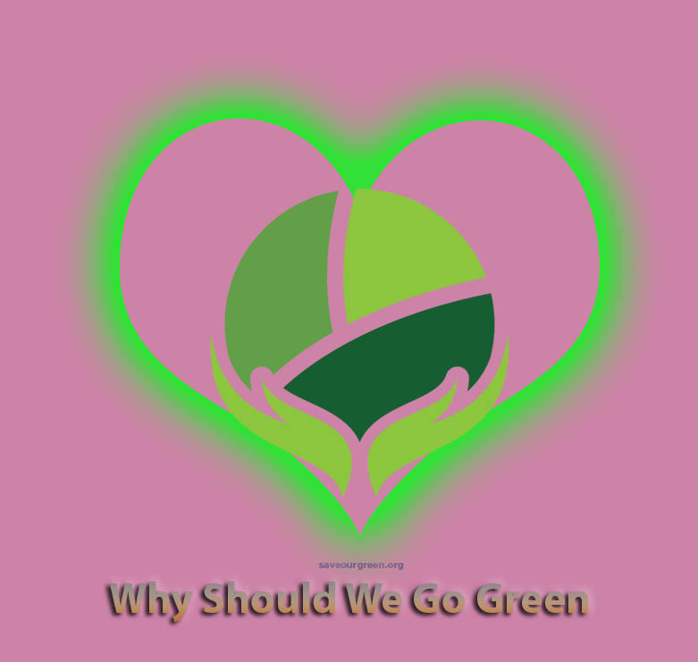 Why should we go green?